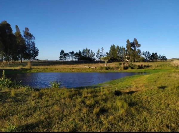 campo de 5 hectáreas en venta. - ndm3032p